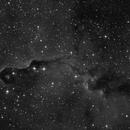 IC 1396 A,                                Martin Armbrecht