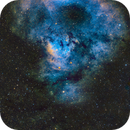 Cederblad 214 and NGC 7822   SHO,                                Paul Borchardt