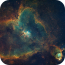 Heart Nebula in Hubble Palette,                                Kurt Bozkurt