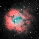 Trifid Nebula BiColor NB,                                Glenn C Newell