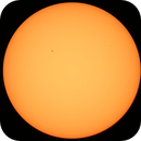 The Sun,                                Brian Sweeney