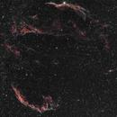 Cygnus Loop,                                Peter Myers