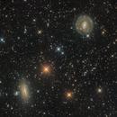 NGC 5078 & 5101,                                Miles Zhou