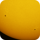 AR12863 and AR12864 with K-Line Filter,                                nonsens2
