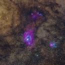 M8 and M20 - Lagoon and Trifid nebulae,                                Ricardo L Pinto