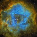 NGC 2244 - the power of the rasa 8,                                Stefan Schimpf