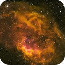 Lower's Nebula - Sh2-261,                                Kyle Pickett