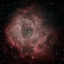Rosette Nebula,                                monsak