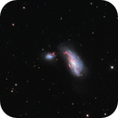 Arp 269 (NGC 4490 and NGC 4485),                                Chris Massa
