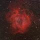 Rosette Nebula,                                stricnine