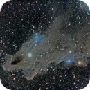 LDN 1235 (Dark Shark Nebula) with vdB 149 and vdB 150,                                Ara