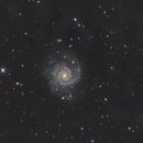 M74,                                HomerPepsi