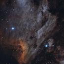 IC 5070 Pelican Nebula,                                Dennis Kaiser