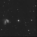 Antennae Galaxies,                                Chris Lasley