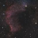 Cygnus wall,                                nighttime.imaging