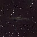 NGC 891 - 5 ottobre 2012,                                Giuseppe Nicosia