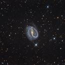 NGC 7479,                                DetlefHartmann
