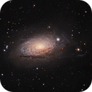 NGC 5055 Sunflower Galaxy,                                Mark Holbrook