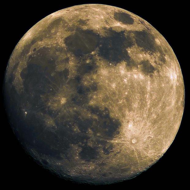 Mond 07.02.2020,                                Marcus Jungwirth