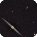 Needle Galaxy,                                Phillip Klein