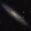 Sculptor Galaxy - October 2016,                                Chappel Astro