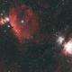 Orion widefield,                                Ben