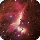 Horsehead Nebula & Flame Nebula,                                Satwant Kumar