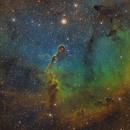 Elephant's Trunk Nebula (IC1396),                                Wilson Yam