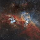 """NGC3576 """"The Statue of Liberty Nebula"""",                                Juan Filas"""
