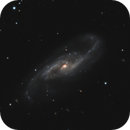 NGC 4536,                                Gary Imm