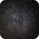 Rosette Nebula,                                Matthias Domke