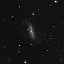 NGC 1808,                                LucasB