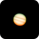 Jupiter (Crop),                                Silkanni Forrer