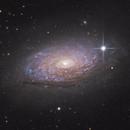 M63 Sunflower Galaxy,                                Adam Jeffers
