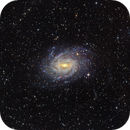 NGC6744 - Galaxy in Pavo,                                Rodney Watters