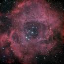 Rosette Nebula,                                Carsten Jacobs