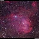 IC2948 Running Chicken Nebula,                                Roger Groom