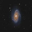 M81,                                Stan Smith