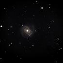 M100 Galaxy + dim  friends,                                Wanni