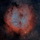 IC1396,                                Craig Prost