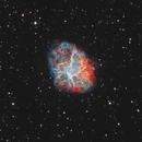 M1: Crab Nebula in Bicolor HOO,                                Chris Sullivan