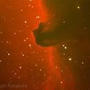 B33 Horse Nebula,                                Roberto Bacci
