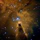 NGC2264 - NEBULOSA DEL CONO - CONE NEBULA,                                Fran Jackson
