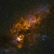 Narrowband portrait of Cygnus,                                Patrick Hsieh