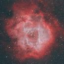 Rosette Nebula,                                deepanshu29