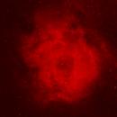 Rosette Nebula,                                David Johnson