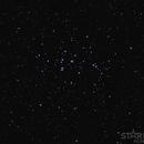 M44,                                Starlight Hunter