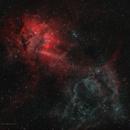 SH2-132 Lion Nebula - HOO with RGB stars,                                Luc Germain