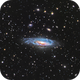 NGC 7331,                                Rich S