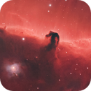 B33, IC434 and NGC2023 close up (crop),                                Roy Hagen